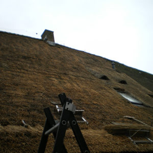 Grote-boerderij-met-rieten-dak-Nijverdal