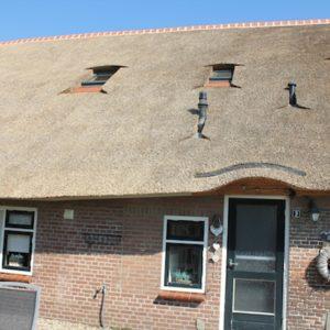Nederland-rietdekker