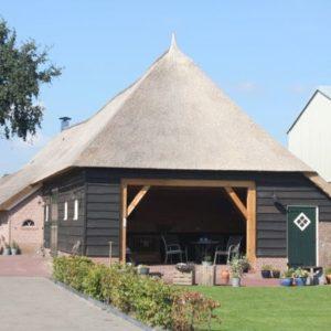 Nieuw-rietendak-boerderij-Staphorst