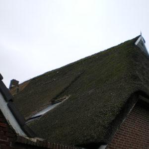 Nijverdal-rieten-dak-mos-verwijderen