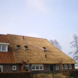 Rietdekkersbedrijf-Staphorst