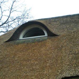 Doordekken van het riet in Nunspeet