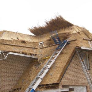 rietdekker in Zwolle