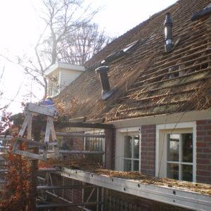 Riet-vervangen-Staphorst
