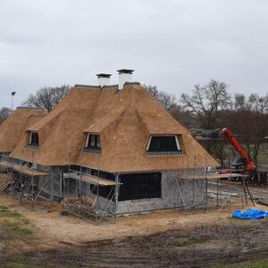 Rieten dak huishorst