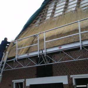 Project rietdekker Nijverdal