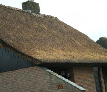 Reparatie rieten dak