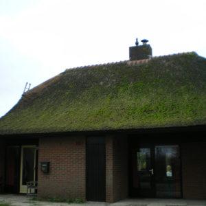 Onderhoud Rietdekker Wanneperveen
