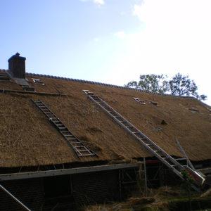 Zijaanzicht-riet-dak-boerderij-Doornspijk