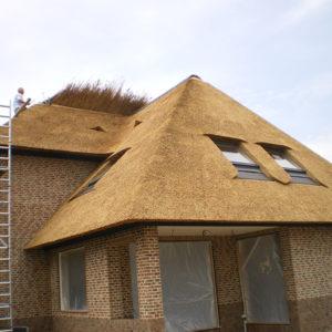 Zwolle-Westenholte-nieuwbouw-rietendak