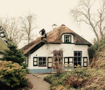 rietendak-Zwolle-scheren